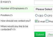 Add professional looking forms to your website